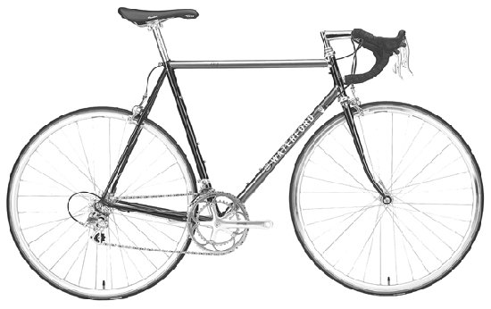 2200 with Stainless Lugs - Charcoal with Anniv Black - Page 8 Bike